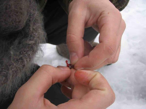 замерзли пальцы на рыбалке