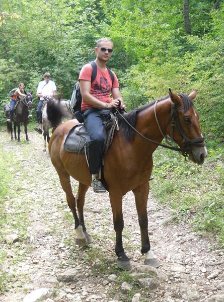Фотосессия с лошадьми летом с девушкой идеи фото позы
