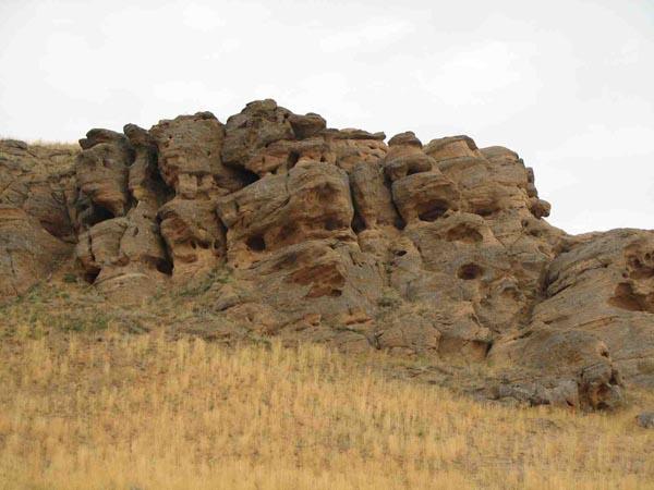 Богдинско-Баскунчакский заповедник, место гнездовья птиц