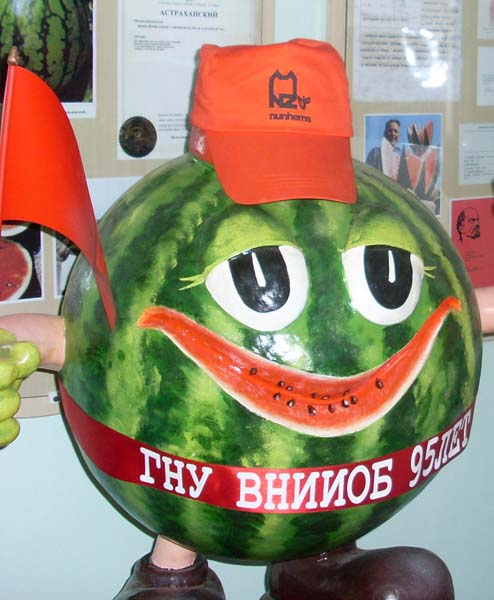 Астрахань, Музей Российский арбуз, ВНИИОБ