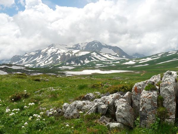 кавказский заповедник фото