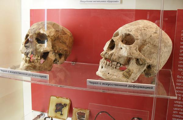 Музей Танаис