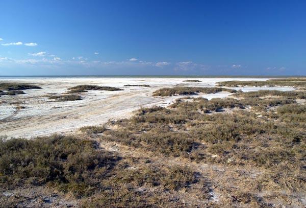 Соленое озеро Эльтон